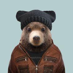 Kodiak Bear Cub - Ursus Arctos Middendorffi