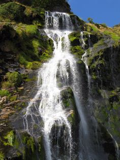 Powerscourt Waterfall: We had such a good tie when we visited the waterfall! have some awesome pics!