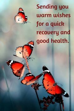 """""""Sending you warm wishes for a quick recovery and good health."""""""