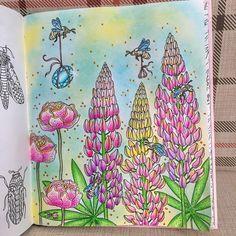 "Обновила раскраску Ханны Карлсон ""Summer nights""... Вот такая летняя картинка получилась.. #раскраска #раскраскаантистресс #раскраскадлявзрослых #ханнакарлсон #летниеночи #хобби #инстамама #цветы #like #instalike #coloringbook #coloring #hannakarlzon #sommarnatt #summernights"