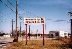 Avalon Beach, Roman Catholic, Best Memories, New Jersey, Shirt Ideas, Tee Shirt, Catholic, Tee, T Shirt