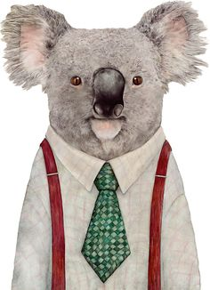 Koala by AnimalCrew