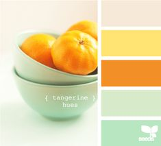 love this color palette - tangerine and minty hues