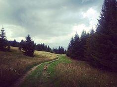 #retourauxsources #megeve #alps #suchabeautifulday