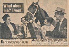 1964 Polo Prince - Melbourne Cup winner - Google Search