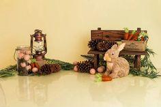 Easter Eggs Rabbit Photo Studio Backdrop SH599 – Dbackdrop Easter Backdrops, Muslin Backdrops, Vinyl Backdrops, Custom Backdrops, Background For Photography, Photography Backdrops, Easter Backgrounds, Rabbit Photos, Easter Toys