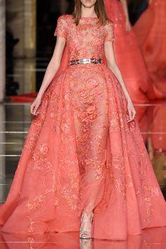 Zuhair Murad and fashion εικόνα