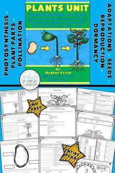 Plants Unit includes lesson plans, hands-on activities and experiments, worksheets, and video links.  #vestals21stcenturyclassroom #teachingplants #plantslessonplans #plantsideas #plantsunit #plantsactivities #3rdgradescience #4thgradescience #5thgradescience