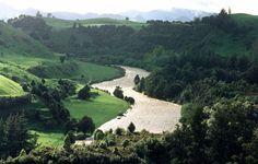 Landscape, The South Island, New Zealand
