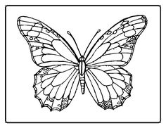 Print Monarch Butterfly Coloring Page coloring page & book. Your own Monarch Butterfly Coloring Page printable coloring page. With over 4000 coloring pages including Monarch Butterfly Coloring Page . Insect Coloring Pages, Butterfly Coloring Page, Mandala Coloring Pages, Animal Coloring Pages, Coloring Pages To Print, Free Printable Coloring Pages, Coloring For Kids, Coloring Pages For Kids, Coloring Sheets