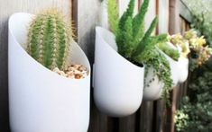 Oval planters add life to the fence