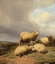 Thomas Sidney Cooper Paintings for Sale | Thomas Sidney Cooper Art Value Price Guide Value In Art, Price Guide, Paintings For Sale, Sydney, Elephant, Auction, Artist, Animals, Animales