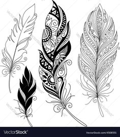 Peerless decorative feather vector on VectorStock&regRisultati immagini per mandala feather drawing Feather Drawing, Feather Tattoo Design, Design Tattoo, Feather Art, Tribal Tattoo Designs, Feather Tattoos, Paisley Tattoo Design, Tribal Feather, Feather Painting