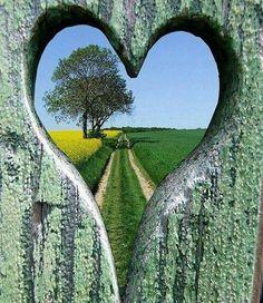 Eu sou um território sem fronteira, Coração não tem porteira,  Mas quem manda aqui é Deus.