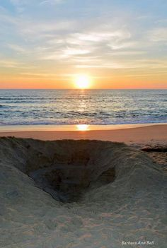 Outer Banks NC Local Artists Facebook post; photographer credit Barbara Ann Bell.