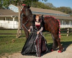 Scary Dragon Horse!!