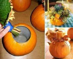 Pumpkin Centerpiece. Use a sheet of paper and draw a circle around your can of  choice size. Cut out the circle. Punch hole center of the circle to allow stem of pumpkin to come through. Trace the outside circle.  Carve the top of the pumpkin, then gut it and dry it with paper towels. Place washed can inside pumpkin and fill with any decor you like. Beautiful!