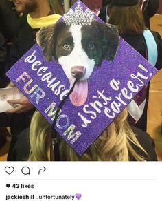 Graduation Grad Cap Vet Tech Assistant Decorated Grad Cap