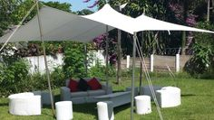 Stretch Tents and Decor