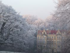 A frosty December afternoon in Szczecin, Poland - like something out of a fairy tale.
