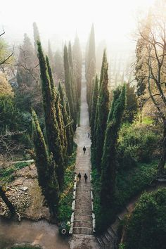 Places to go - the gardens of Verona, Italy                                                                                                                                                      More