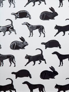 This animal skeleton wallpaper with solid black silhouettes with glossy black varnish skeletons on a grey background. Featuring cats, dogs, rabbits and more. It will smarten up any room in the house really not just the bedroom or playroom. This quality wallpaper benefits from being a paste the wall paper, which means it is incredibly easy to apply and work with whilst decorating. It will also stand the test of time and is easy to remove at a later date. Animal Skeletons, Animal Print Wallpaper, Animal Magic, Wild Creatures, Black Silhouette, Safari Animals, Stuffed Animal Patterns, Gray Background, Moose Art