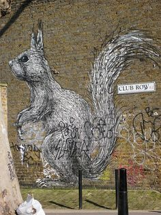 Street art Squirrel: found in east London near Brick Lane, a visually exciting part of London
