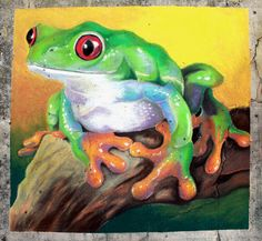 Red-Eyed Tree Frog Chalk Art by charfade on deviantART