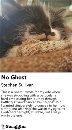 No Ghost by Stephen Sullivan https://scriggler.com/detailPost/story/114975 This is a poem I wrote for my wife when she was struggling with a particularly hard time during her journey through battling Thyroid cancer. I'm no poet, but I wanted desperately to convey to her how strong and amazing she was in my eyes, as I watched her fight, stumble, but always win in the end.