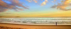 Pelican beach Noosa <3