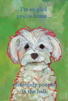 Pooped In The Hall  humorous dog 2X3 magnet, fluffy white puppy dog breed maltese portrait on Etsy, $6.88 CAD