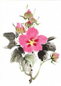 Jane Dwight. Chinese hibiscus
