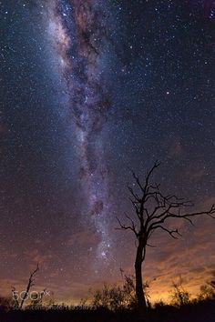 Mellow Milky  In the mighty African night skies I finally got to see the clear Milky Way shining above me. And what a sight it was!  My visit to Africa has yielded some fantastic experiences this image kicking it off. I will be posting scenery and animals so stay tuned!  Enjoy!  Camera: Canon EOS 5D Mark III Lens: EF16-35mm f/2.8L II USM Focal Length: 16mm Shutter Speed: 30sec Aperture: f/2.8 ISO/Film: 2000  Image credit: http://ift.tt/29Invrq Visit http://ift.tt/1qPHad3 and read how to see…
