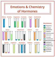 The hormones in the different emotions. - The hormones in the different emotions. Stress And Depression, Pineal Gland, Psychology Facts, Health Psychology, Behavioral Psychology, Educational Psychology, Educational Leadership, Schools Of Psychology, Educational Technology