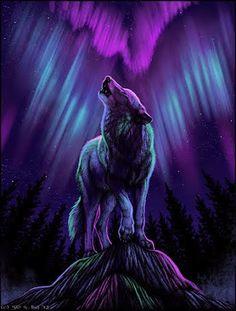 ♥ Wolf Art - Purples & Blues of Night. - ♥ Wolf Art – Purples & Blues of Night. Anime Wolf, Pet Anime, Gato Alice, Tier Wolf, Fantasy Wolf, Wolf Spirit Animal, Wolf Wallpaper, Bts Wallpaper, Iphone Wallpaper