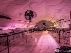 London's bomb shelter farm. Run byGrowing Underground (part of theZero Carbon Food company), the project aims to grow crops in the most environmentally friendly way possible.