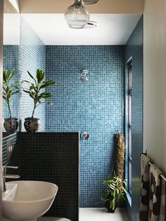 Blue Tiled bathroom with White accents. Details | Potted Plants, white porcelain.