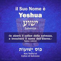 """DALLA BIBBIA: """"Il Suo Nome è Yeshua"""", ישוע — """"Salvezza"""". «Io alzerò il calice della salvezza, e invocherò il nome dell'Eterno.» (dal Salmo 116)   LEZIONE DI EBRAICO: Kos Yeshu'ot, """"Calice della Salvezza"""". https://www.facebook.com/photo.php?fbid=10209053727117845"""