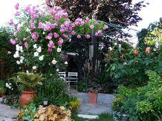 LE MONDE DE SHUKI : Autour de la terrasse ronde... Geranium Vivace, Image Categories, Plantation, Dreamland, Plants, Small Greenhouse, Annual Flowers, Wood Post, Corner Garden