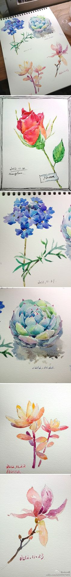 水彩 插画手绘 minna桃的照片 try these flowers
