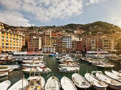 Okay, so we've already waxed lyrical about Camogli, one of Italy's best-kept secrets. So why aren't you there already, sipping a glass of prosecco and watching the sun set over the Italian Riviera? The sleepy, colorful port town still remains the summer getaway of choice by wealthy Milanese and Turinese, but it doesn't mean that you can't enjoy the luxe life, too—if only temporarily. Unlike the narrow, tourist-congested streets of nearby Portofino, Camogli has quiet, open piazzas and nature…