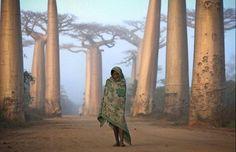 Vea las impactantes imágenes premiadas en el certamen de fotografía de viajeros de la revista National Geographic.