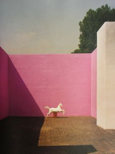 White horse in a pink courtyard