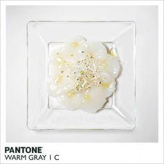 Pantone Warm Gray 1 C