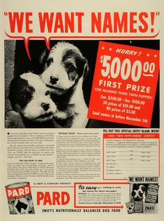 1939 Ad Swift Co Chicago Pard Nutritionally Balanced Dog Food Puppies Products | eBay