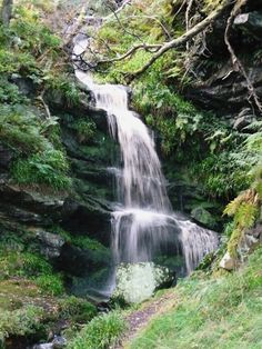 Waterfall off Corby Crags in Northumberland, UK. By Ashley Sims