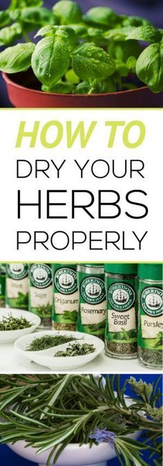 Easily learn how to harvest and dry your own herbs properly for the best flavor!