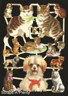 German Victorian Style Embossed Scrap Die Cut - Cats, Dogs & Bows  EF7238