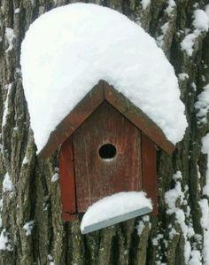 Birdhouse # 2