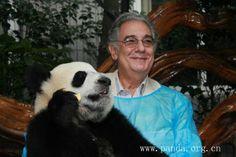 Spanish tenor Placido Domingo and a panda